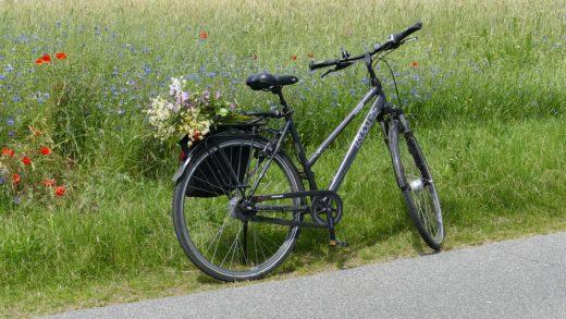 Cykling Falun