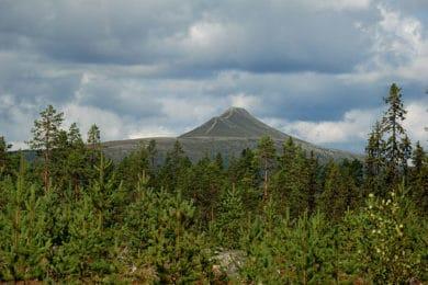Hoga berg Dalarna
