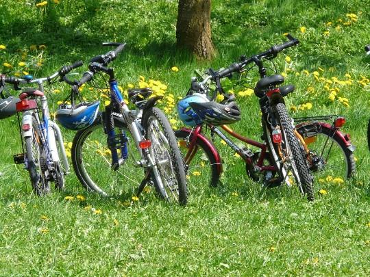 Cykling Leksand