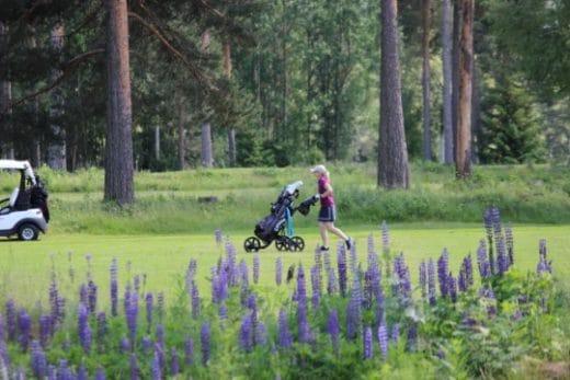 Golf i Dalarna